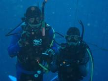 透明な心の世界へ-催眠療法士(ヒプノセラピー)・鹿島光洋のメッセージ-沖縄ダイビング