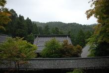 透明な心の世界へ-催眠療法士(ヒプノセラピー)・鹿島光洋のメッセージ-永平寺3